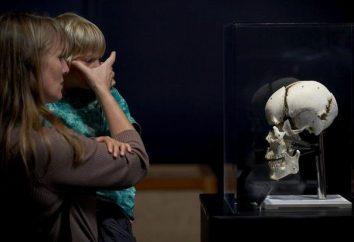 """""""Tajemnice ciała"""" – wystawa ludzkich ciał w Mińsku"""