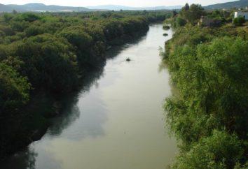 I principali fiumi e laghi di Algeria. Cosa sono?