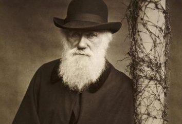 Was ist die biologische Bedeutung der natürlichen Selektion? Beispiele für Tiere und Pflanzen