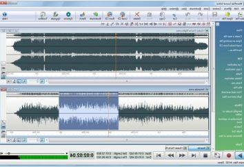Sound Editor: Übersicht der einfachsten Programme zur Klangbearbeitung