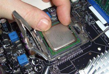 Procesor LGA775: specyfikacje, testy i opinie klientów