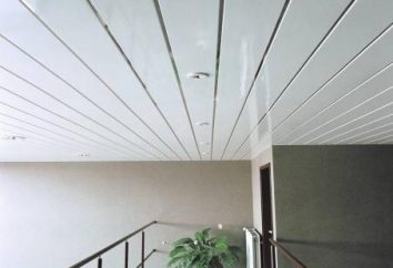 plafond en plastique – l'invasion du 20ème siècle!