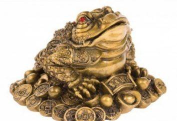 Dlaczego sen żaby – czekać zysk