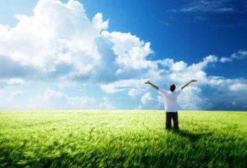 Wie mein Ziel im Leben zu finden? Suche, Identifizierung und das Verständnis für ihren Zweck im Leben