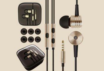 Wkładki słuchawkowe: najlepsze modele, recenzje, oceny, w jaki sposób umieścić na