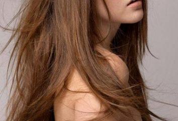 Bangs sur les cheveux longs – les tendances principales et tendances