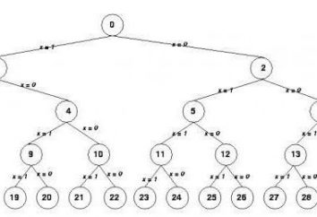 Qual è l'algoritmo con ramificazione? Esempi e determinano gli algoritmi branching
