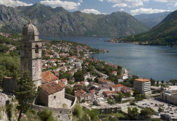 Bandiera e lo stemma del Montenegro. simboli ufficiali del paese