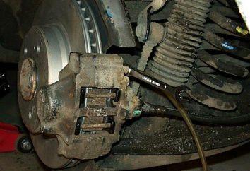 Wie allein oder mit einem Assistenten die Bremsen auf VAZ-2109 zu pumpen?