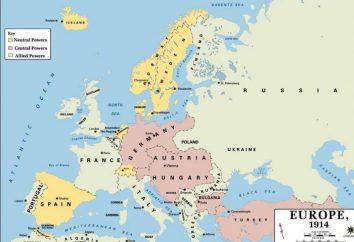 Les participants de la Première Guerre mondiale. Quelles ont été les motivations des parties au conflit pour commencer la lutte contre?