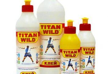 """Klej """"Titan"""": specyfikacje techniczne"""