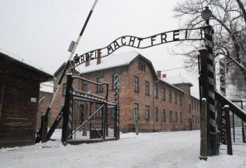 Auschwitz. Auschwitz-Birkenau. campos de concentração