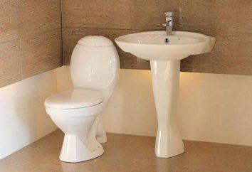 """Szwedzkie toalety """"IFO"""": opinie modelowe"""