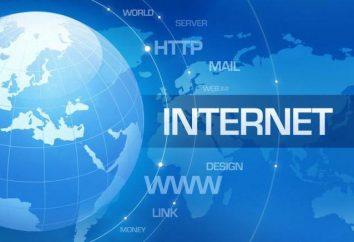 Das Internet als globales Informationssystem. Wenn erschien das Internet in Russland? Online-Ressourcen