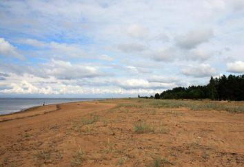 Das Dorf Bolschaja Izhora (Gebiet Leningrad): die Geschichte, das Wetter, der Strand und eine Karte des Dorfes