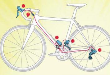 Biegów regulacja cycling: cechy procesu