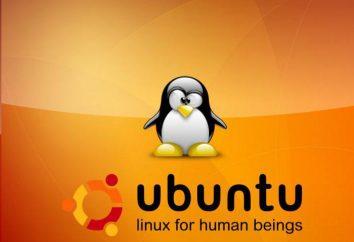 Versión de Ubuntu: una visión general, las características, puntos de vista y opiniones. ¿Cómo saber la versión de Ubuntu?