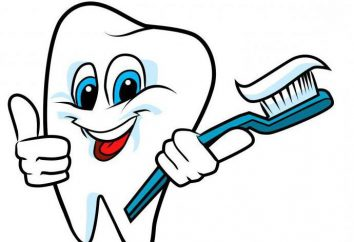 Conseils dentistes combien de fois par jour vous avez besoin de se brosser les dents