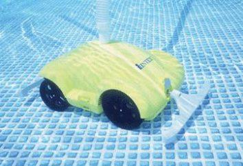 Aspirapolvere per la piscina Intex – panoramica dei dispositivi per la pulizia degli edifici