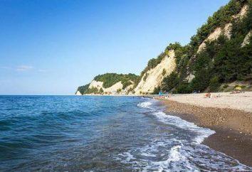 """Pitsunda, Abchazja, """"Paradise Corner"""": przegląd, opis i opinie gości"""
