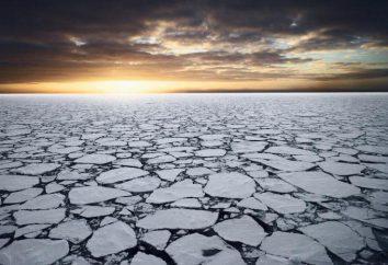 lód paczka: cechy, formowanie, dystrybucja