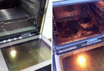 Wie zu Hause den Ofen zu reinigen? Die Funktion des selbstreinigenden Backofens