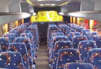 Miejsca w autobusie: systemu. Jak wybrać bezpieczne miejsce w kabinie?