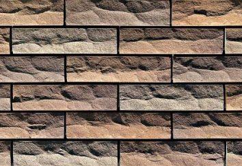 Pavimentación azulejos para paredes interiores en el interior