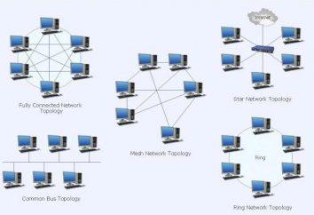 O que é uma topologia? O que se quer dizer com a topologia de rede local