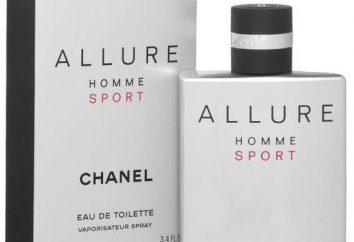 Herren Eau de Toilette Allure Homme Sport Chanel. Bewertungen, Geschmacksbeschreibung und Typen