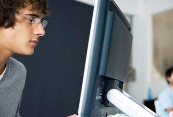 Lo que usted necesita saber el programador de convertirse en profesional