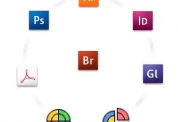 Adobe Bridge: jaki jest ten program, jak go zainstalować i jak go usunąć?