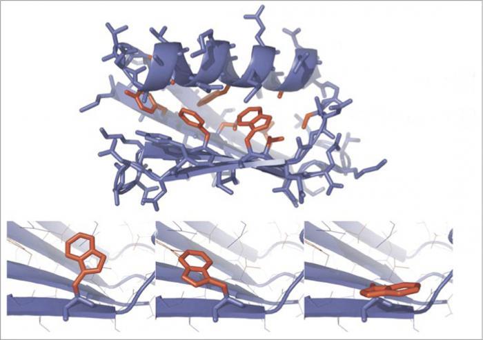 enzymatische reaktion definition
