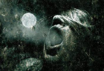 Lista najlepszych horrorów że drętwienie kończyn i skoki serca