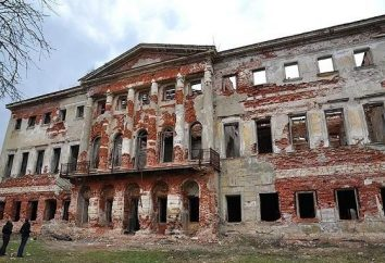 Grebnevo (Manor): história e fotos. mansão abandonada Grebnevo