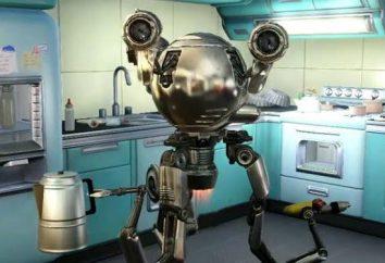 Universal Robots no Abrigo de precipitação. Como corrigir o Sr. Helper?