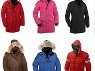 Con más cálido – pelusa o hollofayber? ¿Qué material de relleno es el más adecuado para las chaquetas de invierno?