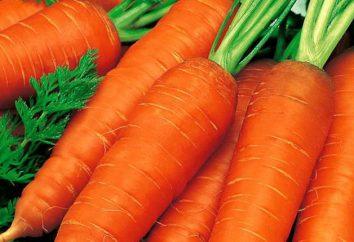 Losinoostrovskaya carota: descrizione, la coltivazione