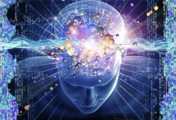 esfera cognitiva – ¿qué es esto? El desarrollo cognitivo