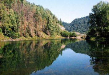 Lake of Omsk Gebiet: die beliebtesten Gewässer