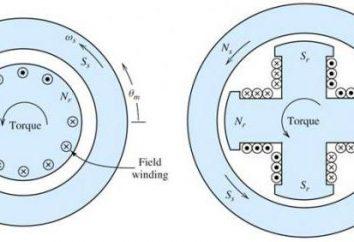 Sincrono e motore asincrono: le differenze, il principio di funzionamento, l'uso di