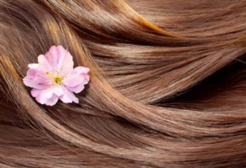 Qu'est-ce que les cheveux humains