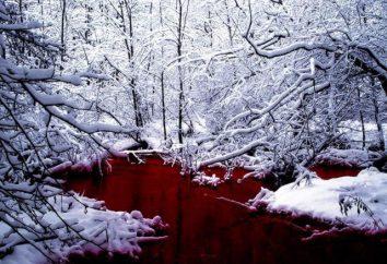 Red Lake – un gioco basato su SCP-354 impianto