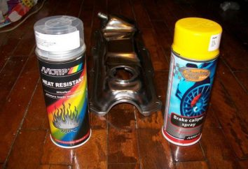 laque résistant pour les poêles et cheminées: types, caractéristiques