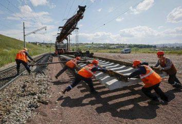 Instituto de tren en Moscú. ¿Cuántos de ellos? ¿Cuál elegir?
