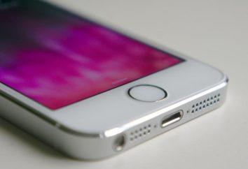 Szczegóły na temat jak zrobić iPhone ładowania procent