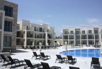 Amphora Beach Resort 4 Suites Hotel: los servicios ofrecidos
