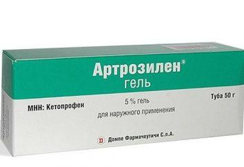 """Il gel anti-infiammatori """"Artrozilen"""": l'uso di funzioni"""