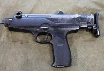 """metralhadora """"castanha"""" AEK-919K: descrição, características e comentários"""