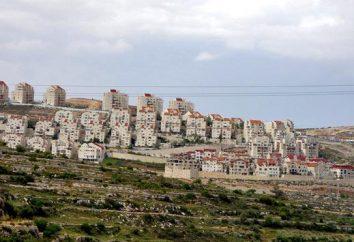 insediamenti di terra: il concetto e la composizione